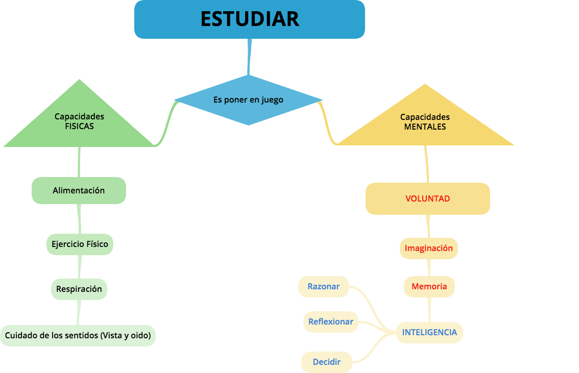 Diagrama del significado de ESTUDIAR